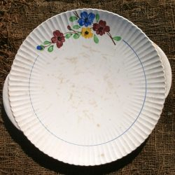 plat faux plat beausoleil digoin recto