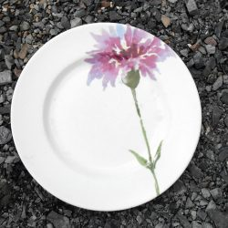 assiettes plates grandes micro ondes recto
